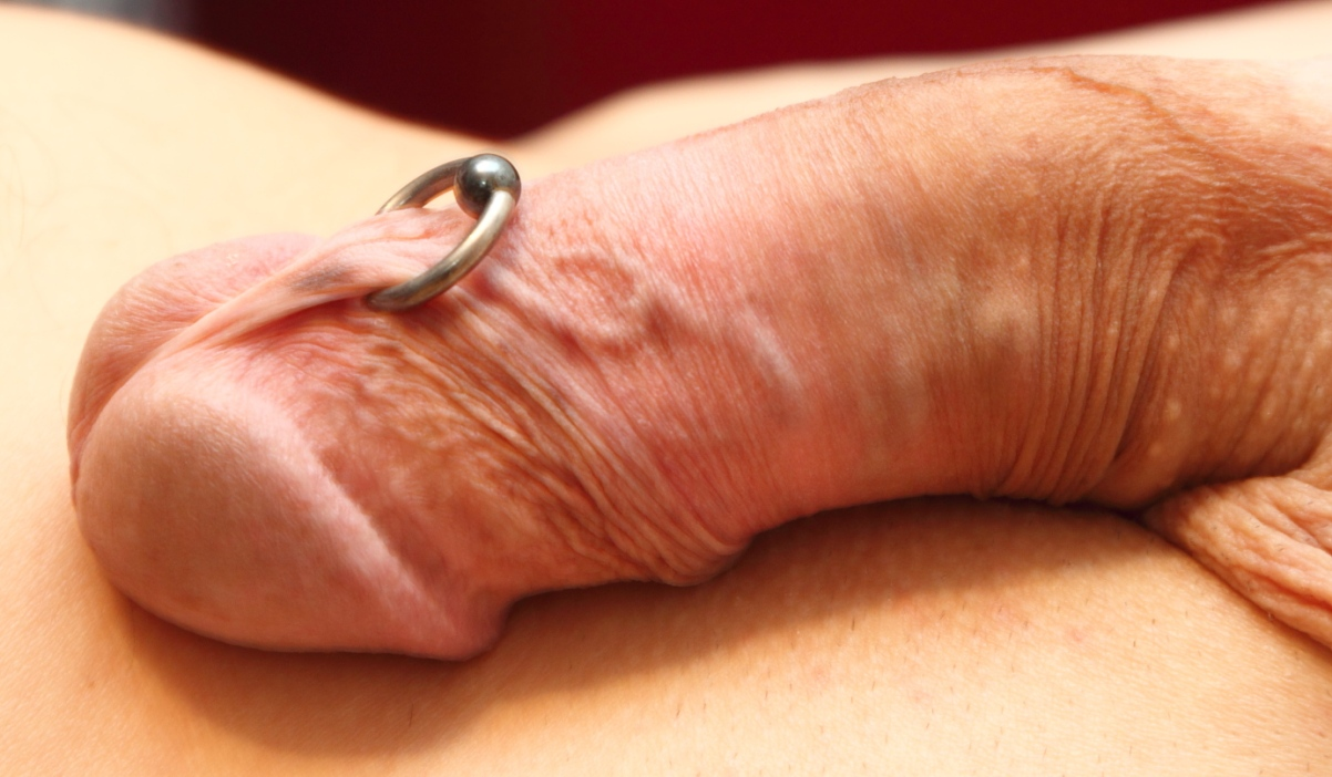 Pictures Of Pierced Penis 2